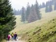 7 Punkte Weg - Tageswanderung über sanftes Almengebiet