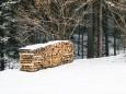 winterwanderung-mariazell-18022018-3718