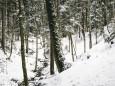 winterwanderung-mariazell-18022018-3739