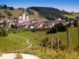 Basilika Mariazell im Sommer