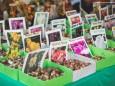 bauernmarkt-gusswerk-2017-47964