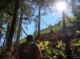 Aufstieg durch den Wald zur Bichleralpe