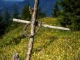 Bichleralpe Gipfelkreuz