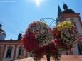 Blumenschmuck im Mariazellerland 2013
