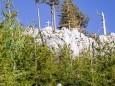 brunnsteinmauer-wandertour-mariazellerland-5441