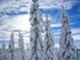 Skitag - Impressionen von der Mariazeller Bürgeralpe - Winter 2013 (19. Jänner)
