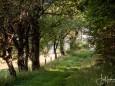 kalvarienberge-im-mariazellerland-1163_0
