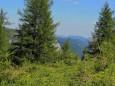 Edelboden im Hochschwabgebiet. Foto: Gerti Leitner