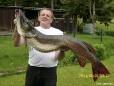 Heinz Karl mit seinem Prachtexemplar eines Erlaufsee Hechts. 120cm lang, 13.5 kg schwer.