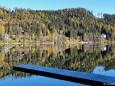 Erlaufsee Spiegelungen im Herbst - 29.Oktober 2010