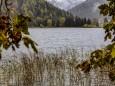 erlaufsee-fotostrecke-herbstfarben-18102020-2