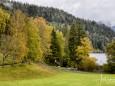 erlaufsee-fotostrecke-herbstfarben-18102020-5