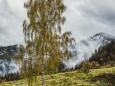 erlaufsee-fotostrecke-herbstfarben-18102020-8