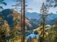 BLICK ZUM ERLAUFSEE - Wanderung Erlaufursprung - Brunnstein - Brach - Gemeindealpe - Erlaufsee