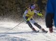 FIS Europacup der Damen in St. Sebastian - Mariazellerland 2011- Slalom