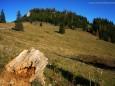 Ochsenboden - Herbstwanderung Köckensattel-Fahrnboden-Ochsenboden