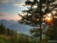 Sonnenuntergang bei der Bergwelle - Falco Tribute