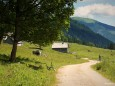 Höhenreithalm - Fallenstein (1536m) Wanderung