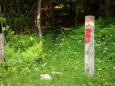 Einsteig hinter dem Zaun - Fallenstein (1536m) Wanderung