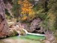 Fastenwanderungen mit Dr. Surböck bei der Saftfastenwoche im Herbst 2012 - Mariazellerland