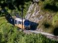 mariazellerbahn-und-blumen-6603
