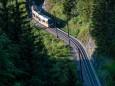 mariazellerbahn-und-blumen-6687