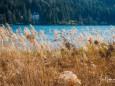 fruehling-im-mariazellerland-230402020-29236