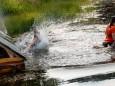 gatschathlon-2021-in-mitterbach-2614