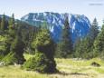 Blick zurück vorm letzten anstrengenden Anstieg zum Gipfelkreuz - Gr. Geiger (1723 m) Rundwanderung von Hinterwildalpen