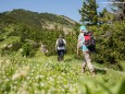 Wanderbare Gipfelklänge am 7. Juni 2015 - Lackenhof-Riffelsattel-Kleiner Ötscher-Eibenkogel-Fuchswaldhütte Weitental