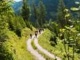Gipfelklänge 2017: Durch Wald und Wiesen © Mostviertel Tourismus/Fred Lindmoser