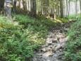 bodenbauer-haeuslalm-sackwiesensee-sonnschien-1050143