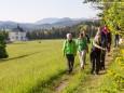 Auch am Wegesrand wachsen unzählige Kräuter. Heilige und Heilende Wege nach Mariazell - Kräutergärten am Sebastianiweg