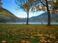 Erlaufsee am Morgen - 12. Oktober 2012