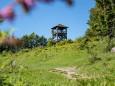 Hochbärneck Rundwanderung vom Almgasthaus zum Almgasthaus