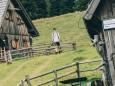 Sohlenalm | Hohe Veitsch - Rundtour
