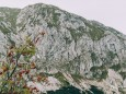 Das Gipfelkreuz sieht man schon | Hohe Veitsch - Rundtour