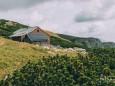 Graf Meran Hütte | Hohe Veitsch - Rundtour