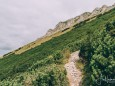 Abstieg Teufelsteig, fast unten | Hohe Veitsch - Rundtour