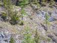klausgraben-02052019-c2a9-elisabeth-lammer_32