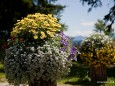 Blumenschmuck beim Pfanni