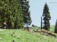 BLICK ZURÜCK auf DÜRRIEGEL - Wanderung - Großer Königskogel (1574m) über Schöneben und Dürriegel