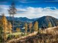 Zellerrain (1121m) - (Hochkogel (1134 m) - Lärchenkogel (1031 m) - Erlaufsee - Wanderung