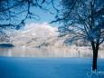 winterlandschaft-mariazellerland-11122020-0132