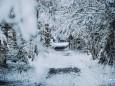 winterlandschaft-mariazellerland-11122020-0144