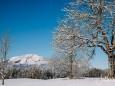 winterlandschaft-mariazellerland-11122020-0147