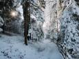 winterlandschaft-mariazellerland-11122020-0165