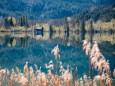 maiszinken-lunz-am-see-rundwanderung-3725