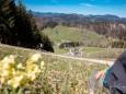 maiszinken-lunz-am-see-rundwanderung-3770