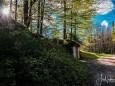 marienstein-naturpark-oetscher-tormaeuer-4343